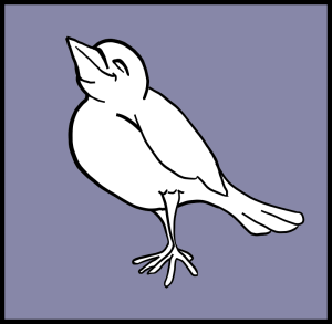 mairin_Happy_Bird